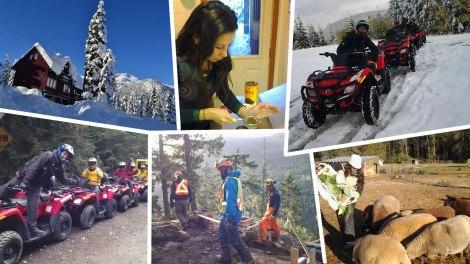 Nuestros trabajos con la Working Holiday Visa Canadá - British Columbia 2012 - 2013