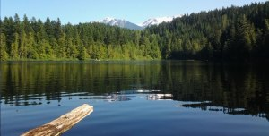 mosquito_lake
