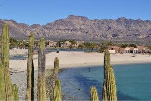 Nuestro camping en San Carlos, Sonora