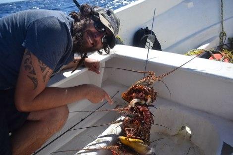 El anticucho consta de: langostas, cangrejos, distintos pescados y a veces caracol.