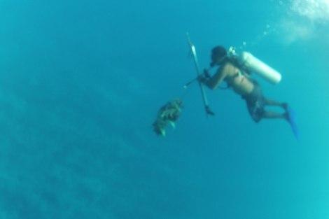Paco subiendo con su anticucho marinero
