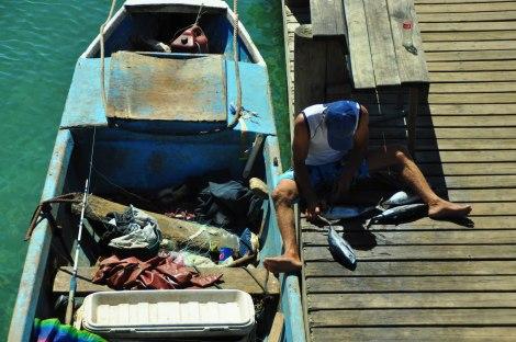 El Zorro y sus atunes. Le compramos 3 libras (casi 1,5 kgs) por USD$5