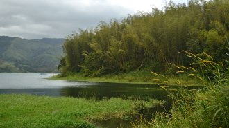 lago_arenal