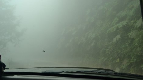 neblina_camino_a_mindo_ecuador
