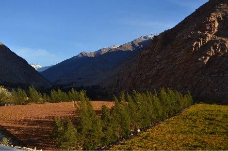 El Valle de Elqui invernal...
